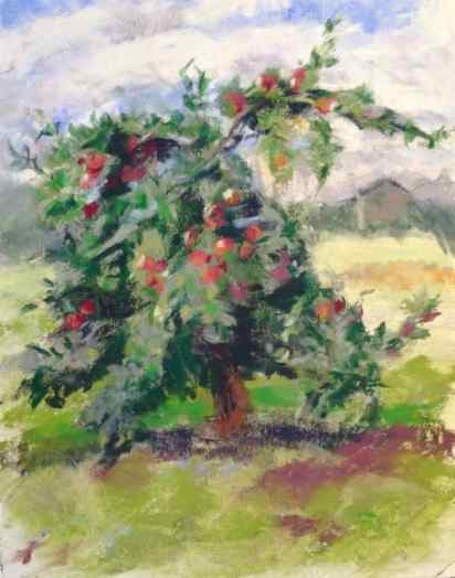 "SOLD. ""Cockamamie Tree."" 14x11, pastel on paper. Done in a workshop; instructor made no marks. Tree in Romeo, Michigan, at Big Red Orchard. #puremichigan"