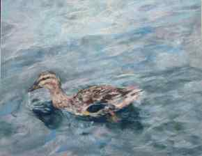 "SOLD. ""Duck, Duck ... Duck."" 11x14, pastel on paper."