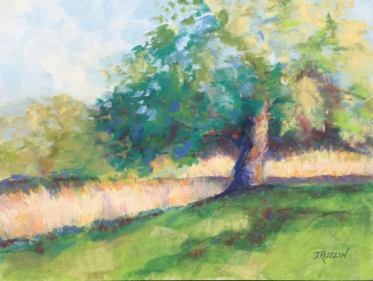 """SOLD. """"Grass Afire."""" 9x12, pastel on paper. The canal at Belle Isle in Detroit. #belleisle #puremichigan"""