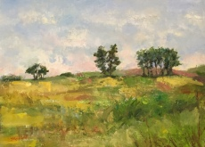 """Faraway Hill"", another painting with very thick paint that is difficult to photograph well, but is so pretty in person! 9x12, oil on panel. Painted plein air in Hastings, Michigan. $295."