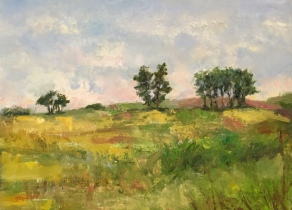 """""""Faraway Hill"""", another painting with very thick paint that is difficult to photograph well, but is so pretty in person! 9x12, oil on panel. Painted plein air in Hastings, Michigan. $295."""